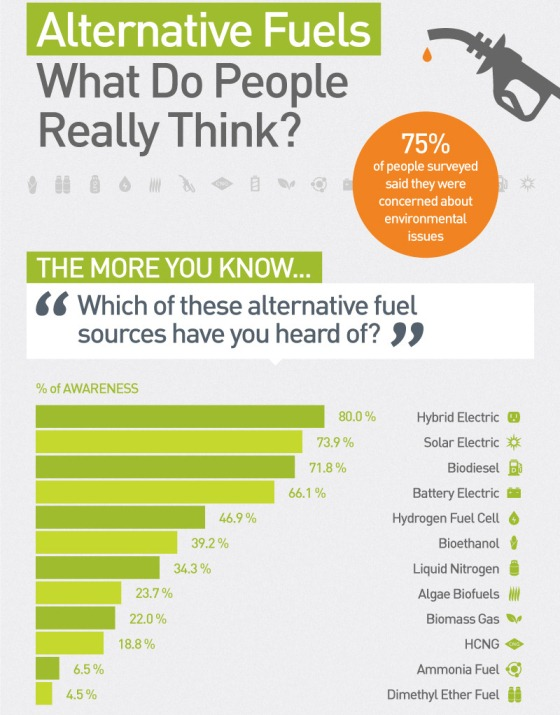 Alternative Fuels: What Do People Really Think? (Infographic) |