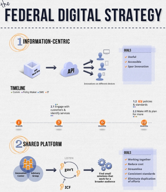 Federal Digital Strategy (Infographic)