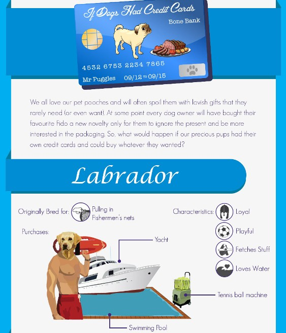 if dogs had credit cards