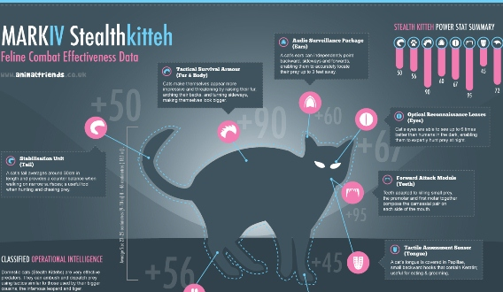 stealth kitteh