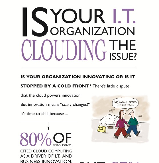 is your I.T. organization clouding the issues