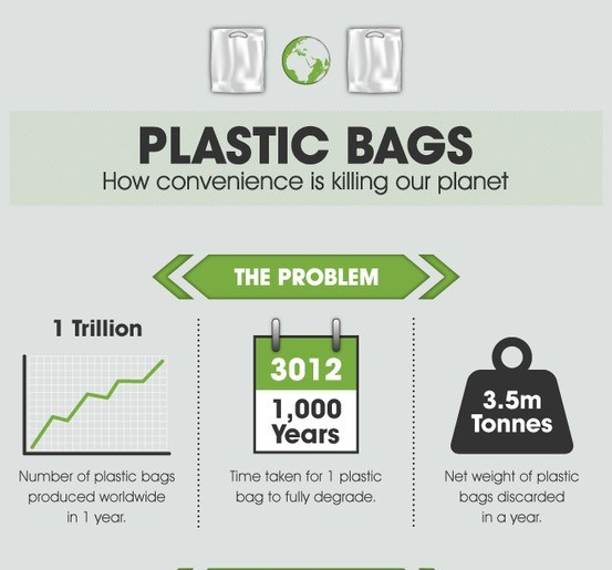 plastic bags how convenience is killing our planet
