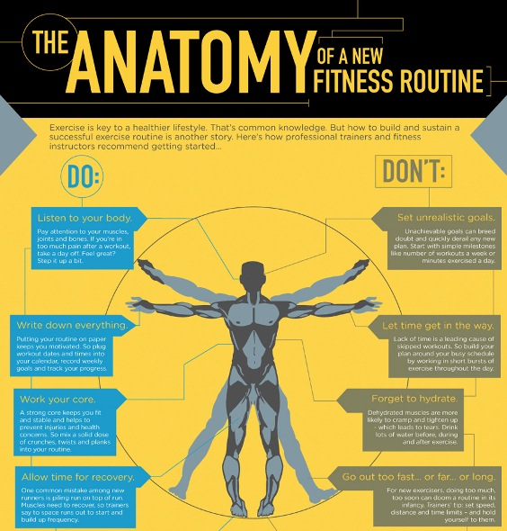 the anatomy of a new fitness routine