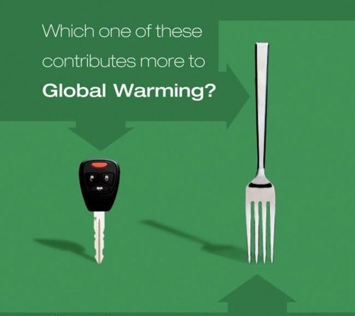 which of these contributes more to global warming