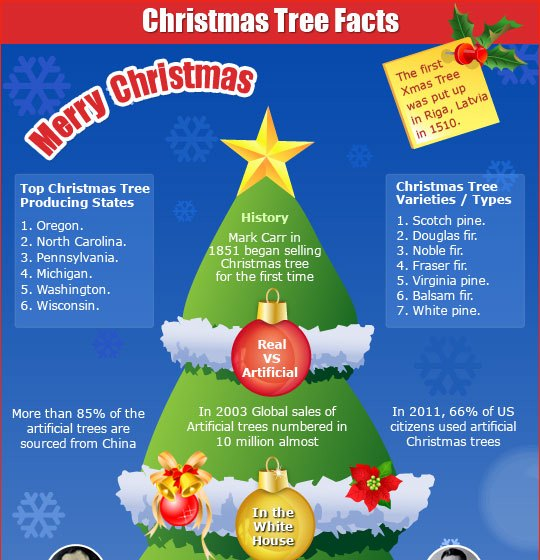 Interesting facts about trees 100 images interesting for Fun facts white house