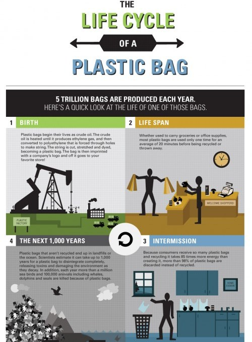 Life Cycle of A Plastic Bag (Infographic)