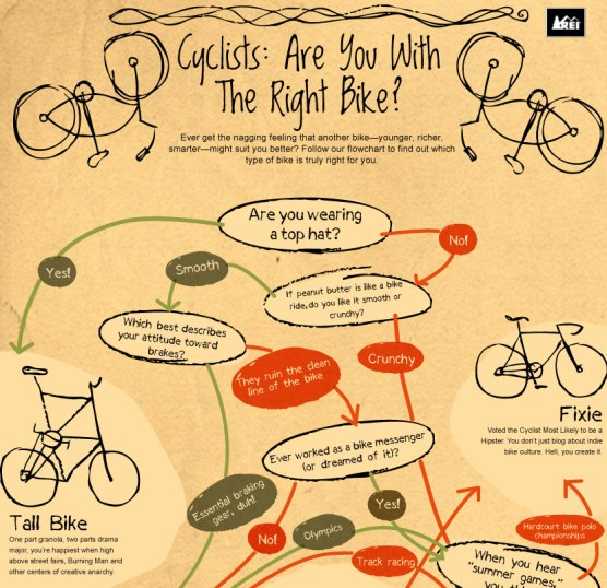Top 10 Bike Infographics
