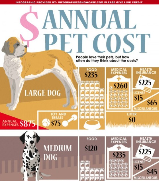 annual pet cost 1