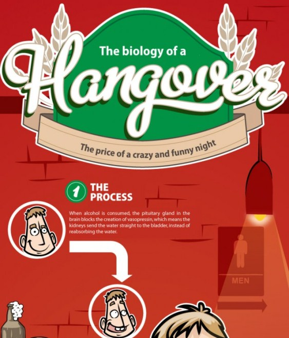 Biology of Hangover (Infographic)