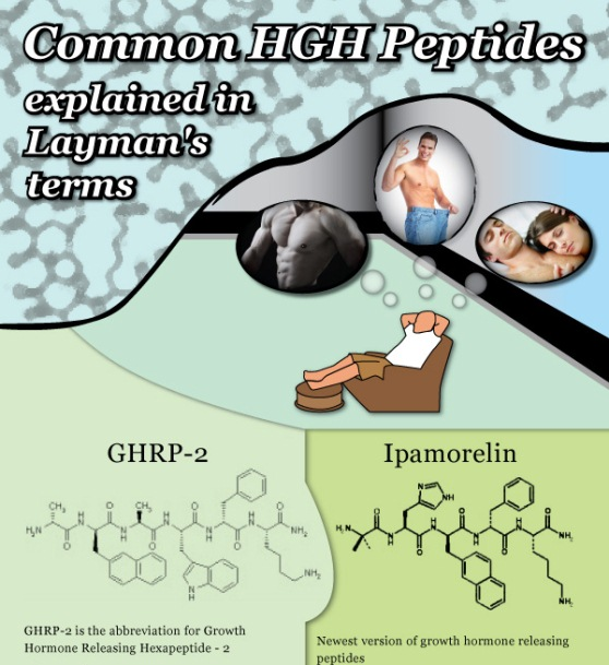 Differentiation of Different Kinds of HGH Peptides (Infographic)
