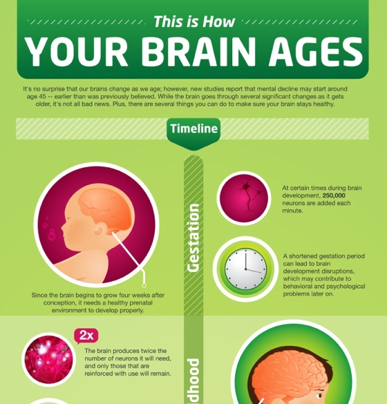 how your brain ages 1