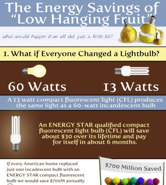 the energy savings of low hanging fruit 1
