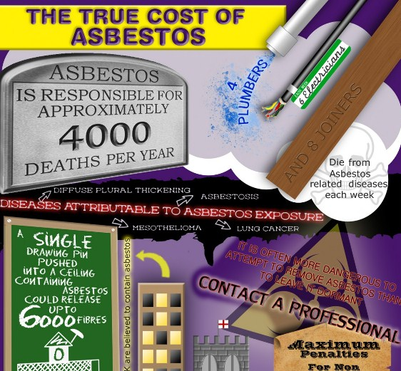 the true cost of asbestos 1