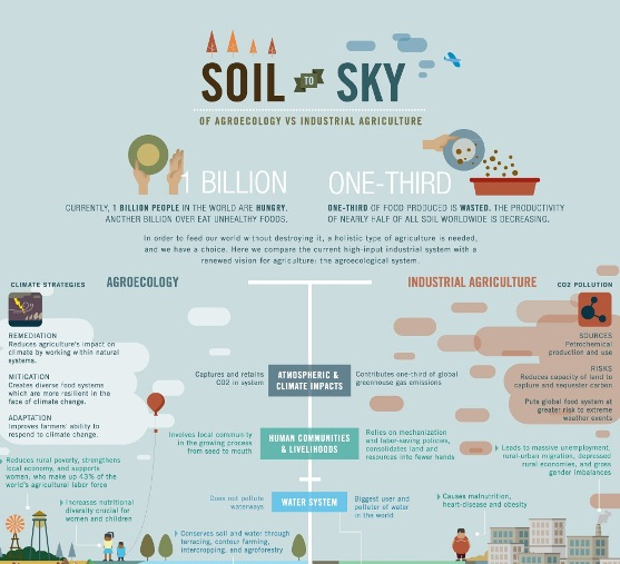 Agroecology vs. Industrial Agriculture (Infographic)