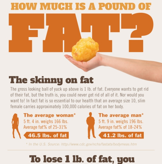 how much is a pound of fat 1
