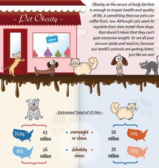 Pet Obesity (Infographic)