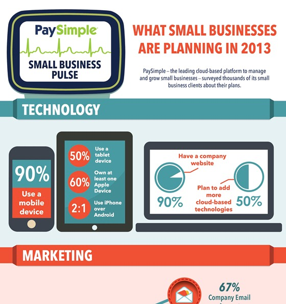 What Small Businesses are Planning in 2013 (Infographic)