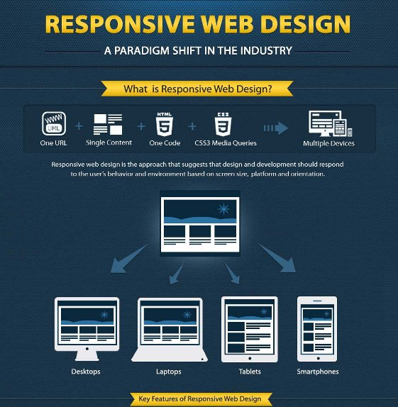 Responsive Web Design: A Paradigm Shift in the Industry (Infographic)