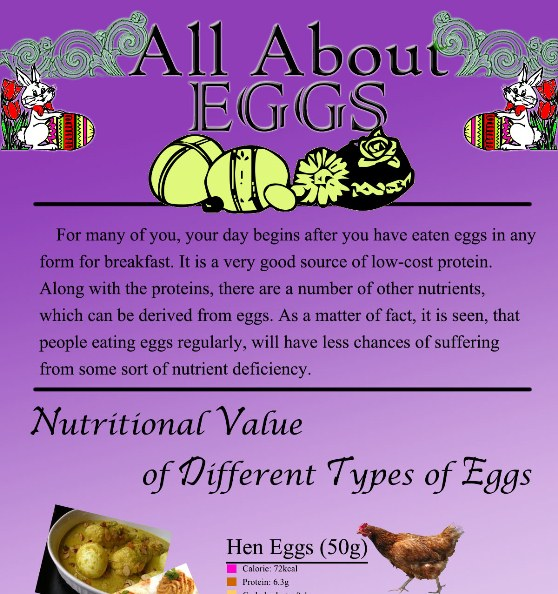 all about eggs 1