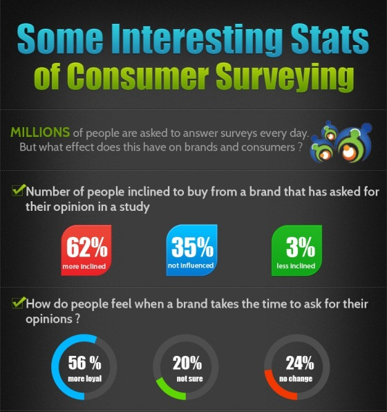 Does Consumer Surveying Bridge the Gap (Infographic)