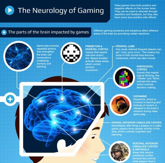 the neurology of gaming 1