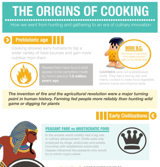 the origins of cooking 1