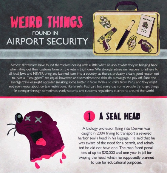 weird things found in airport security 1