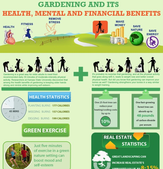 gardening and its health, mental and financial benefits 1