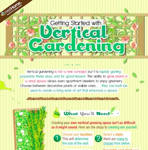 getting started with vertical gardening 1