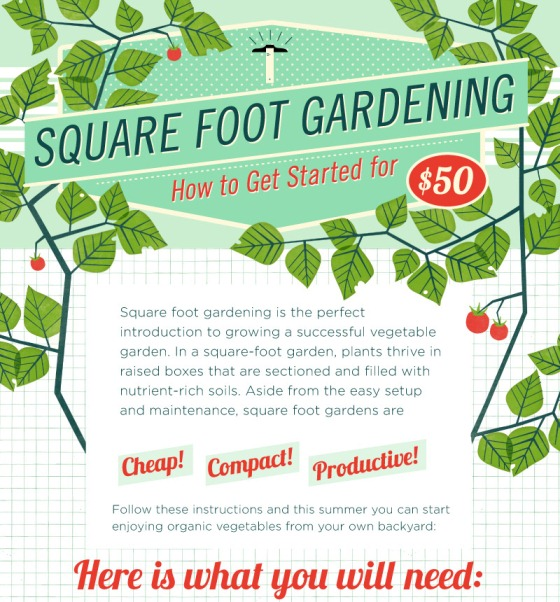 square foot garden 1