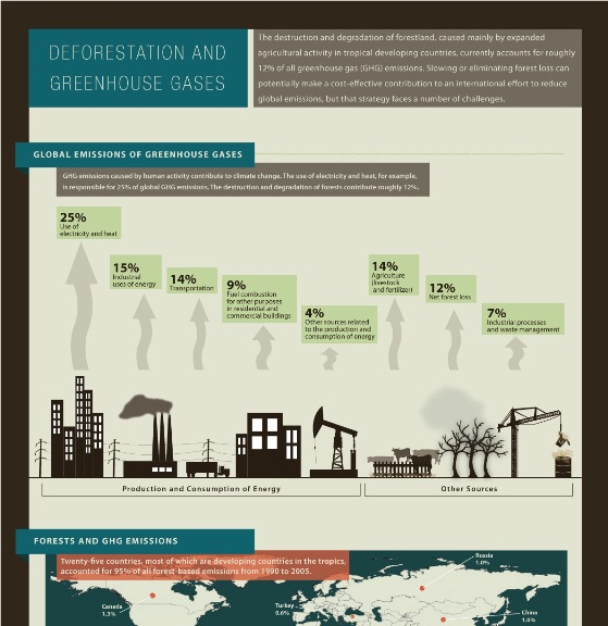 deforestation and greenhouse gases 1