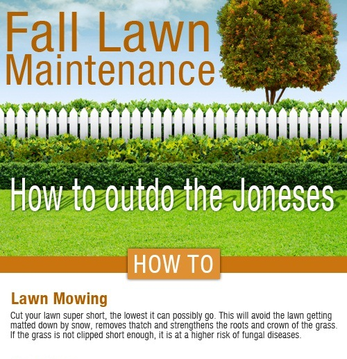fall lawn care how to beat the joneses next spring 1