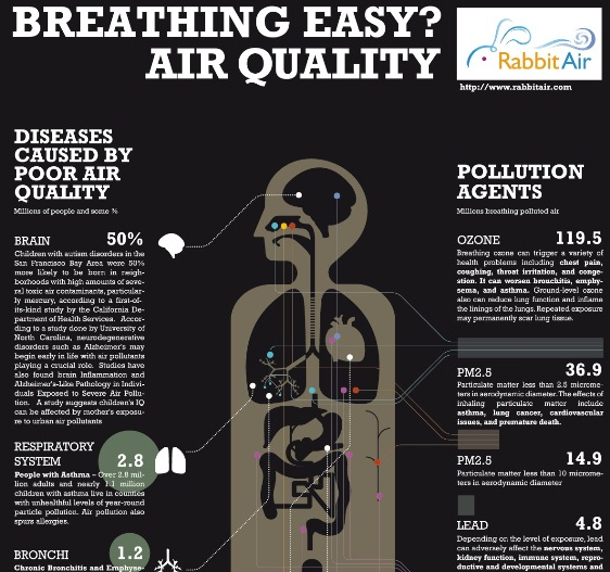 Top 5 Air Pollution Infographics