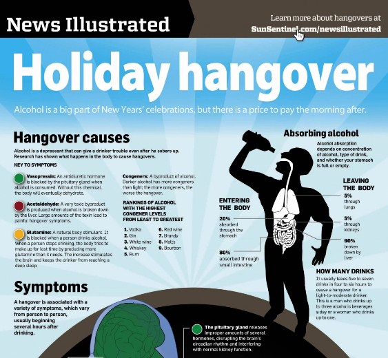 holiday hangover 1