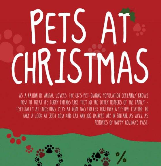 pets at christmas 1