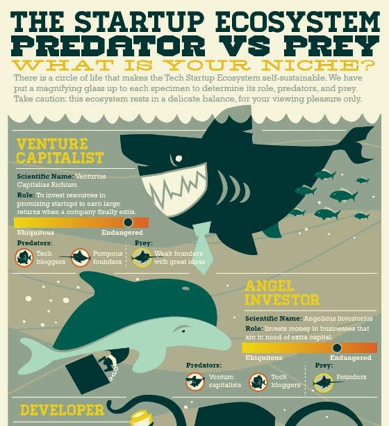 the startup ecosystem predator vs Prey  what is your niche 1