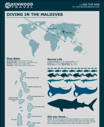 Basic Guide to Scuba Diving in The Maldives
