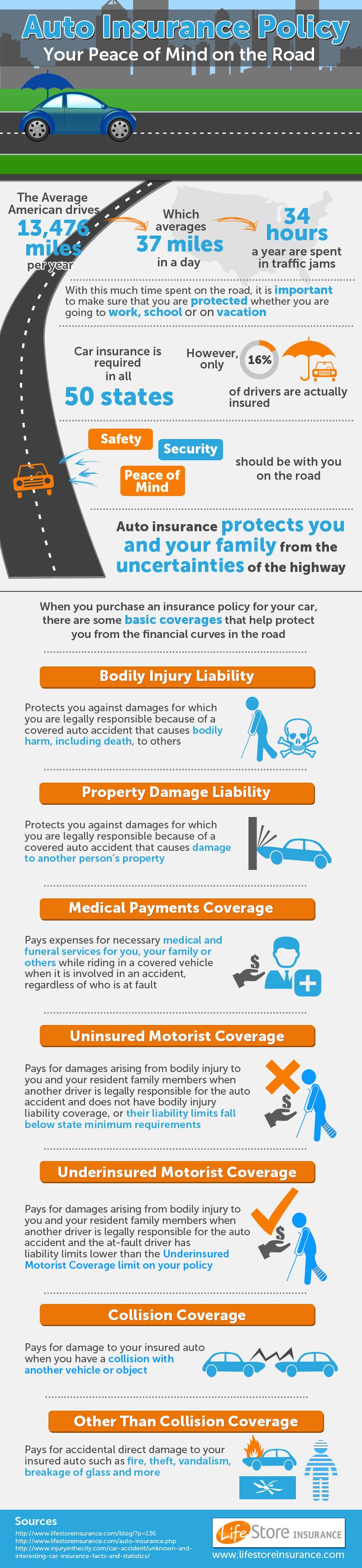 Top 10 Auto Insurance Infographics