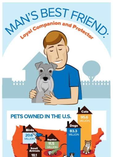 Facts About our Furry Friends